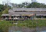 The Orinoco Delta Lodge - Click to enlarge